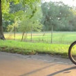 Riding bicycles young couple — Stock Video