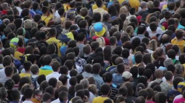 Crowd of soccer fans — Stockvideo