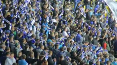 Football supporters raise team scarfs — Stock Video
