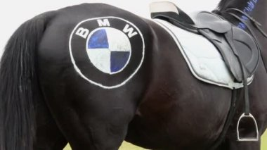 Horse with BMW logo on crupper — Stock Video