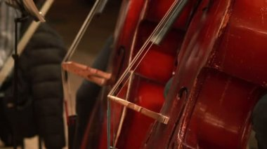 Concerto di musica classica — Video Stock