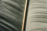 Textura de folha — Fotografia Stock