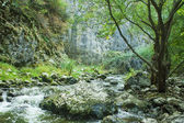 Cold river in mountains of Transylvania — ストック写真
