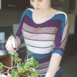 Stock Photo: Attractive girl watering a plant in pot