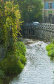 River stream in autumn day, Cluj-Napoca — ストック写真