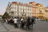 Dos caballos y transportista en la antigua plaza de remolques — Foto de Stock