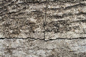 Old wall cement grunge — Foto de Stock