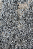 Old wall cement grunge — Stockfoto