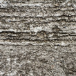 Stock Photo: Old wall cement grunge