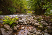 Mountain river with stones — Foto Stock