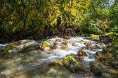 Mountain river with stones — Stock Photo