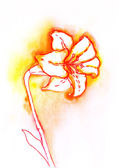 Lily watercolor — Stock Photo