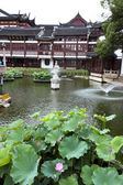 Traditional Garden, Shanghai — Stockfoto
