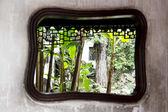 традиционный сад, шанхай — Стоковое фото