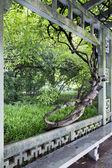 Hangzhou, China — Stock Photo