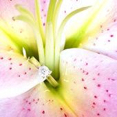 Jewelry, lilium — Stock Photo
