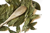 Aromatic bay leaves on a white background — Stock Photo