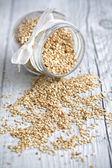 Sesame grains — Stok fotoğraf
