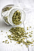 Chives - erba cipollina — Stok fotoğraf