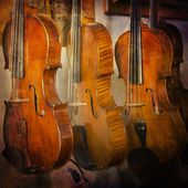 Violins — Stock Photo