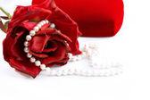 Náhrdelník z perel — Stock fotografie