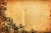 Grunge background — Stockfoto