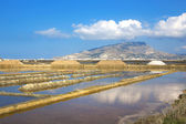 Saline of Trapani — Stock Photo