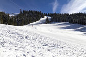 Monte Verena  — Photo