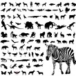 animales — Vector de stock