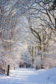Winter scene in East Grinstead — Stock Photo
