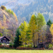 Autumn scene showing alpine style chalet and trees at Cormayeur — Stock Photo