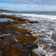 Stock Photo: View of Dunstanburgh Castle at Craster Northumberland