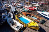 Crowded harbour at North Berwick — Stock Photo