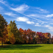 Stock Photo: Autumn tints in Parco di MonzItaly