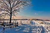 Winter scene in East Grinstead — Stok fotoğraf
