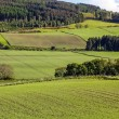 Arable landscape near Drumderfit — Stock Photo