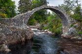 Packhorse bridge at Carrbridge — Stock Photo