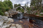 Packhorse bridge at Carrbridge — Stock Photo
