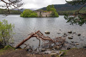 Castle in the middle of Loch Eilein — Stockfoto