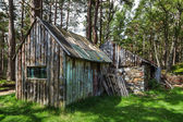 Derelict shack near Loch an Eilein — Stock Photo