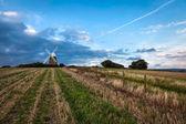 Halnaker Windmill — Stock Photo