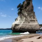 Cathedral Cove Coromandel Peninsula — Stock Photo #39027339