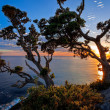 Stock Photo: Sunrise at Te Pare Point