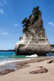 Cathedral Cove Coromandel Peninsula — Stock Photo