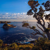 Sunrise at Te Pare Point — Stock Photo