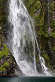 Waterfall at Milford Sound — Photo