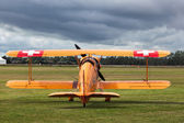 Bucker 131 Jungmann vintage Biplane U95 at Goodwood — Stock Photo