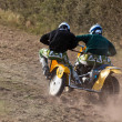 Sidecar motocross at Goodwood Revival — Stock Photo #39133131