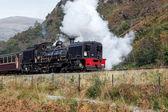 Welsh Highland Railway — Stock Photo