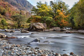 View along the Glaslyn River in autumn — Stock fotografie
